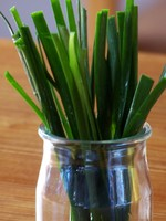 Garlic_chives_2
